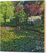 Lily Pond And Colorful Gardens Wood Print
