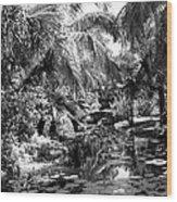 Lily Pond Bw Wood Print
