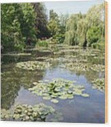 Lily Pond - Monets Garden Wood Print