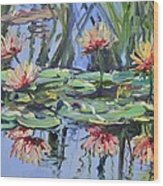 Lily Pond Reflections Wood Print