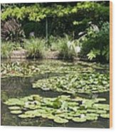 Lily Pond View Monets Garden Wood Print
