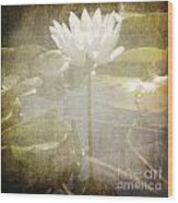 Lily Reflections Wood Print