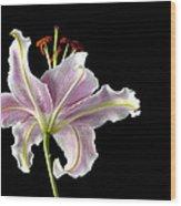 Lily Up Close Wood Print