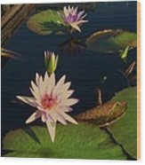 Lily White Monet Wood Print