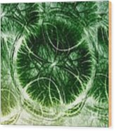 Lilypad - Fractal Wood Print