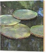 Lilypad Quads Wood Print