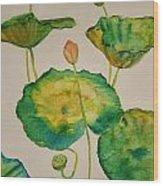 Lilypads 1 Wood Print