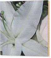 Lilyrose Wood Print