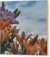 Lilys At La Fonda Wood Print