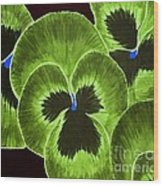 Lime Green Pansies Wood Print