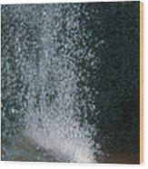 Limestone In Acid Wood Print