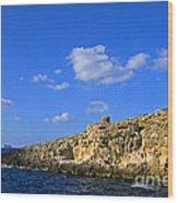 Limestone Rock, Mediterranean Sea, Malta Wood Print