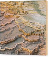 Limestone Terraces Yellowstone National Park Wood Print