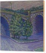 Lincoln Ave Bridge Pittsburgh Wood Print