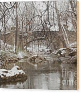 Lincoln Bridge In Winter Wood Print
