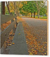 Lincoln Park Bench In Fall Wood Print