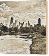 Lincoln Park View Sepia Wood Print