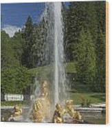 Linderhof Fountain Wood Print