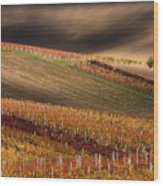 Line And Vine Wood Print