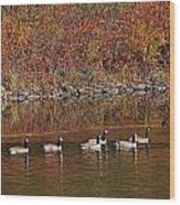 Line Of Geese On The Quinapoxet River Wood Print