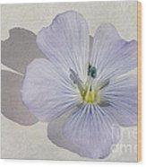 Linen Watercolour Wood Print