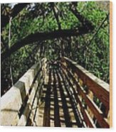 Lines Of Shade Wood Print by Will Boutin Photos