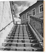 Lines On The Stairs Wood Print