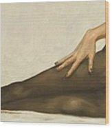 Lingerie II Wood Print by John Silver