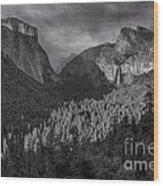 Lingering Shadows In Grey Wood Print