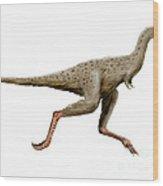 Linhenykus Dinosaur Wood Print