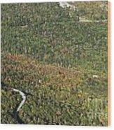 Linn Cove Viaduct And Grandfather Mountain Along The Blue Ridge Parkway Wood Print