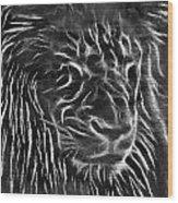 Lion - 2 Wood Print