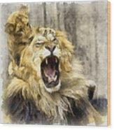Lion 15 Wood Print