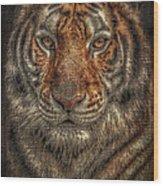 Lion Canvas Portrait Wood Print