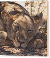 Lion Close Up Wood Print