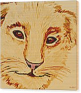 Lion Cub Wood Print by Elizabeth S Zulauf