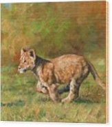 Lion Cub Running Wood Print