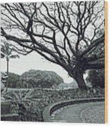 Lion Dog And Tree - Liliuokalani Park - Hawaii Wood Print
