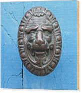 Lion Face Door Knob Wood Print by Lainie Wrightson
