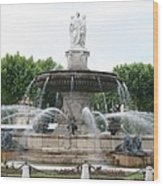 Lion Fountain - Aix En Provence Wood Print