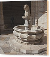 Lion Fountain Jeronimos Monastery In Lisbon Wood Print