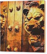 Lion Heads Gothic Door Wood Print