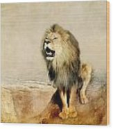 Lion Wood Print by Heike Hultsch