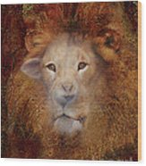 Lion Lamb Face Wood Print