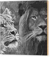 Lion Pair Black And White Wood Print