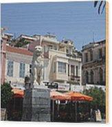 Lion Place Of Samos Wood Print