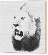 Lion Portrait - Lions Of The Masai Mara Wood Print by Aidan Moran