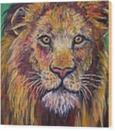 Lion Stare Wood Print