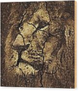 Lion -wall Art Wood Print