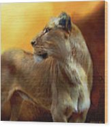 Lioness Is Near Wood Print